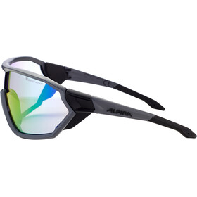 Alpina S-Way L VLM+ Lunettes, coal matt-black